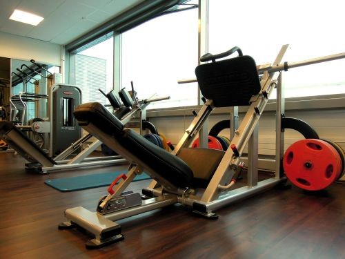 sports in the gym weights