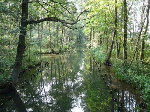 spreewald biosphere reserve idyll
