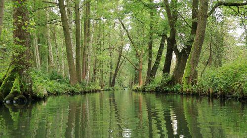 spreewald water channel