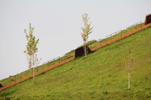 spring walk landscape