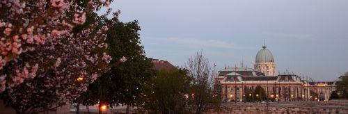 spring budapest buda castle