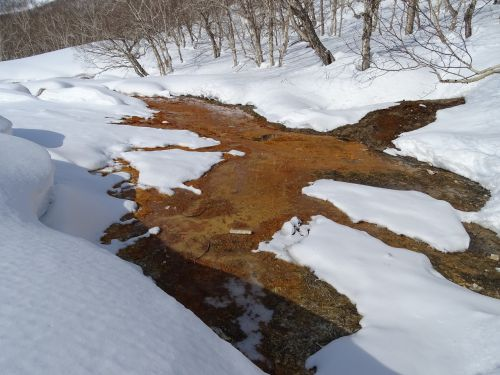 pavasaris, karštosios versmės, sniego tirpimas, upelis, šviesi diena, šiluma, žiema, tyla, poros, miškas, sniego dramos, gamta, kamchatka, be honoraro mokesčio