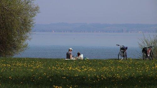 spring  lake  picnic