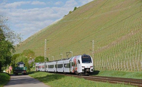 spring  vineyard  winery