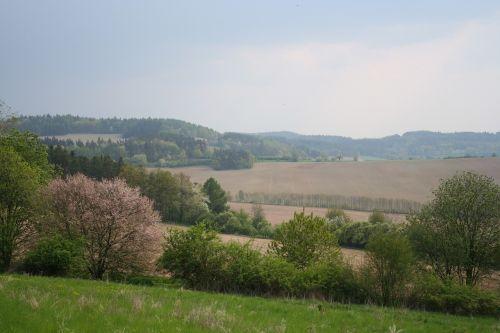 spring landscape czech republic