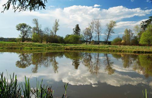 spring landscape water-level