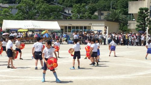 spring sports day festival apartment