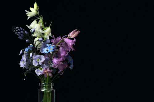 spring bouquet  bouquet of flowers  spring
