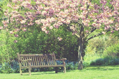 Spring Garden Vintage Colors
