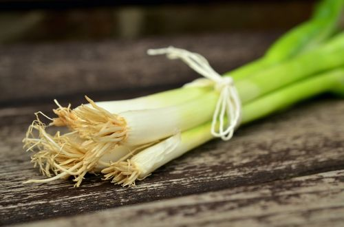 spring onions vegetables spring onion