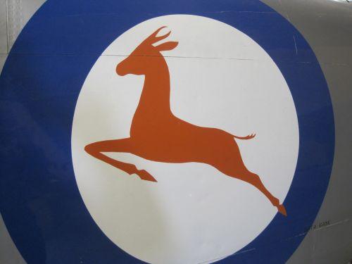 Springbok Roundel