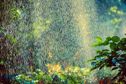 sprinkler  irrigation  backlighting