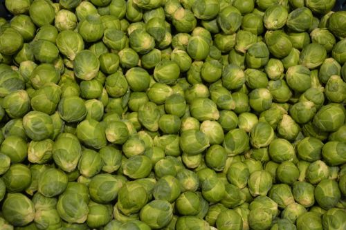 sprouts vegetable green