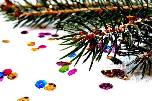 spruce photos of christmas christmas