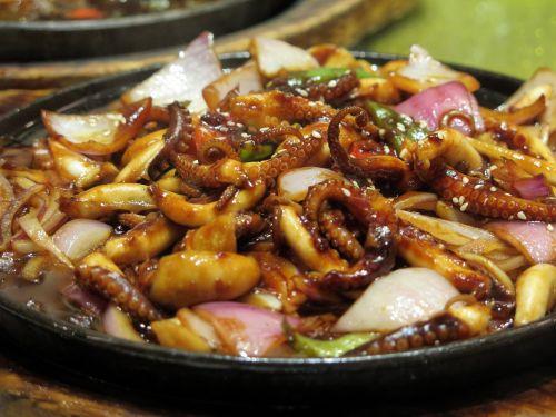 squid eat asia