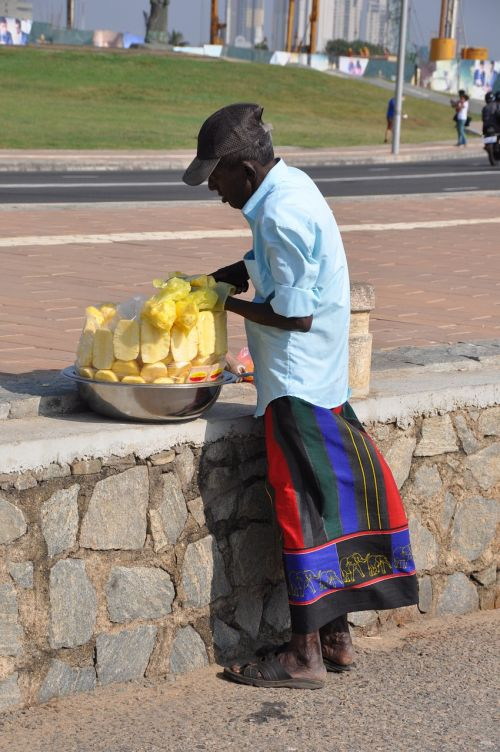 srilanka travel pineapple seller