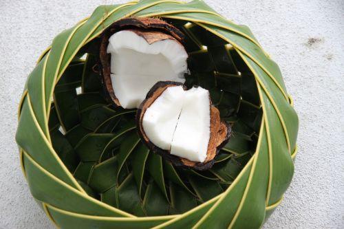 st lucia coconut basket