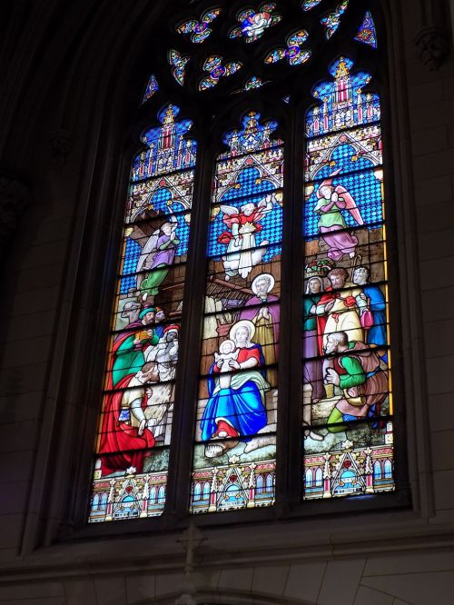 st patrick's cathedral stained glass nativity