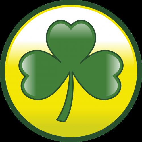 st patricks day shamrock clover
