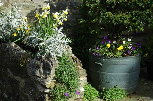 st patricks day spring break garden