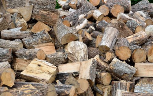žievė, ruda, supjaustyti, ekologija, miškas, miškininkystė, medienos ruoša, rąstai, mediena, gamta, krūva, pušis, ištekliai, pjūvis, lentpjūvė, minkšta mediena, sukrauti, tekstūra, mediena, tradicinis, medis, bagažinė, mediena, medinis, rąstų kopa