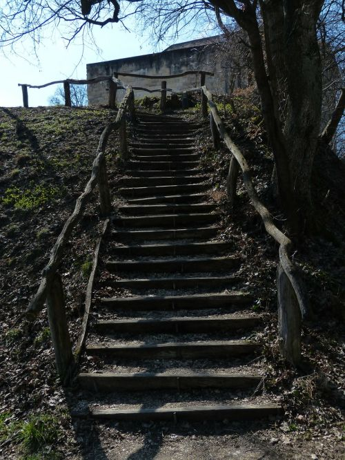stairs wood forest