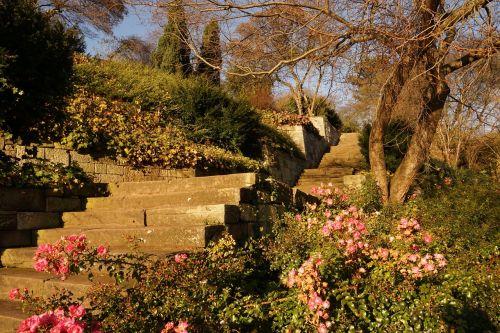 stairs stair step stone stairway
