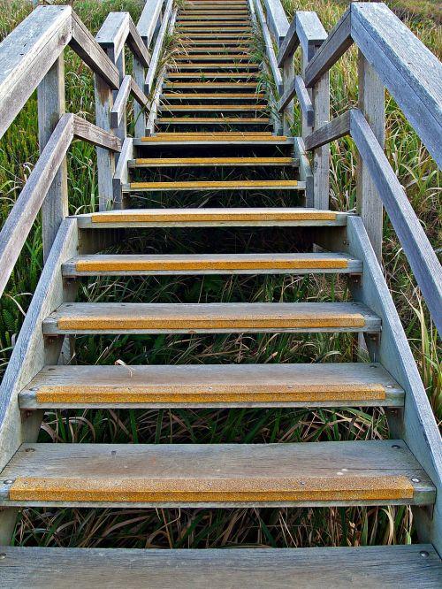 stairs stairway steps