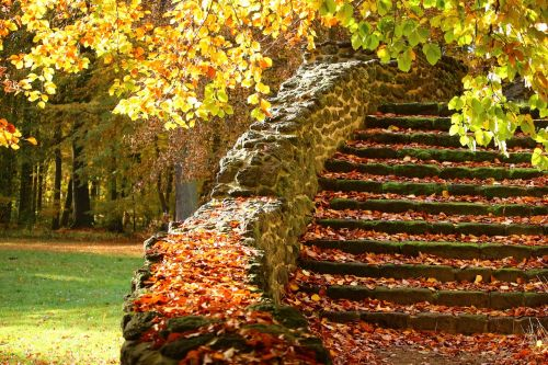 stairs stone steps autumn