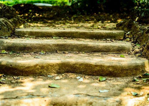 stairs steps stairway