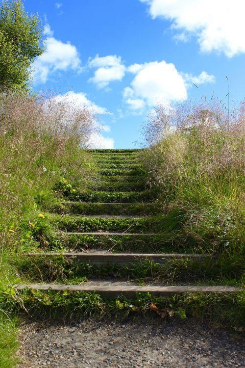laiptai,Laiptai į rojų,laiptai,žingsniai