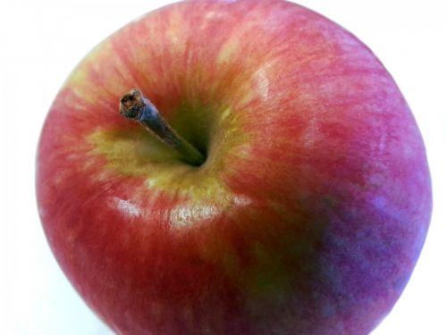 obuolys, vaisiai, maistas, maitinti, maitinimas, saldus, raudona, maitinimas, mityba, izoliuotas, obuolio stiebas