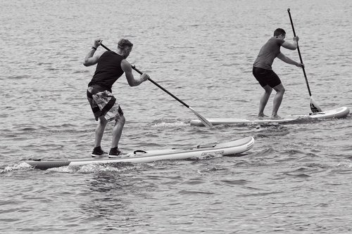 stand up paddling  paddling  water sports