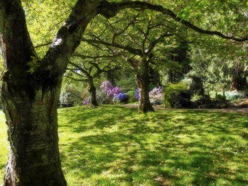 stanley park vancouver british columbia