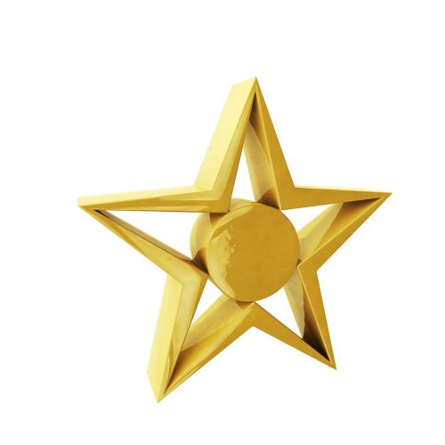 star symbol icon