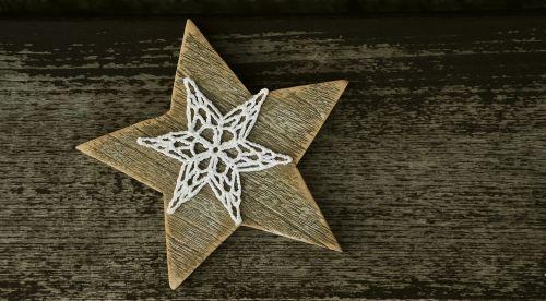 star poinsettia wood