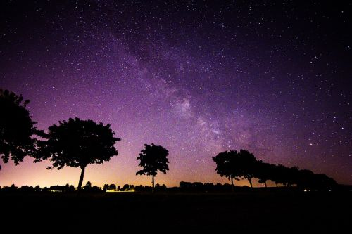 star milky way trees