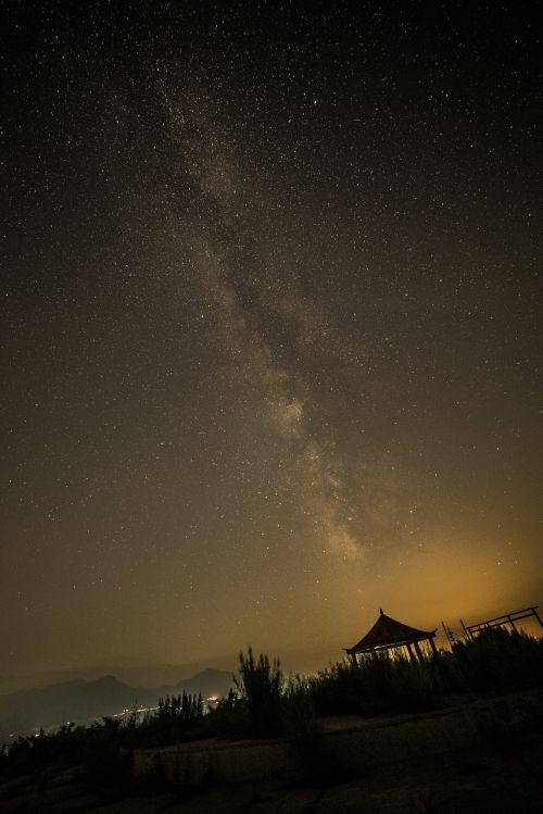 star night shy