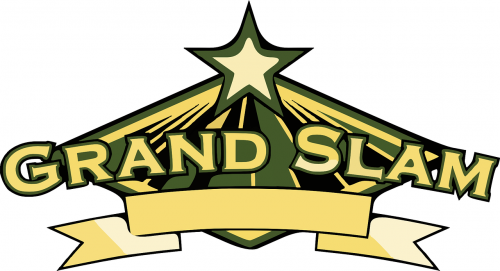 star logo trans