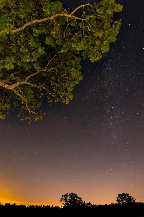 star night starry sky