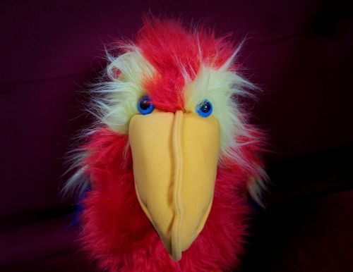 stare parrot puppet