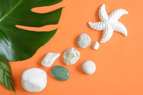 starfish  pebbles  stones