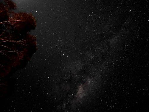 žvaigždės,naktis,dangus,paukščių takas,paukščių takas,erdvė,naktinis dangus,žvaigždės nakties danguje,astronomija,mokslas,žvaigždė