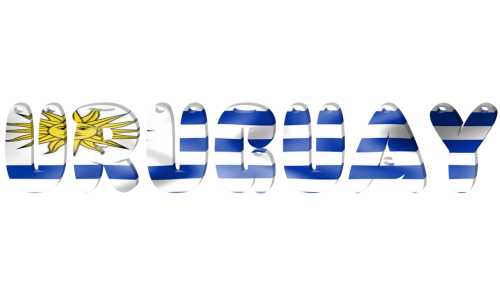 state international flag