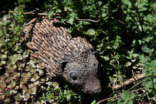 Static Hedgehog In The Garden