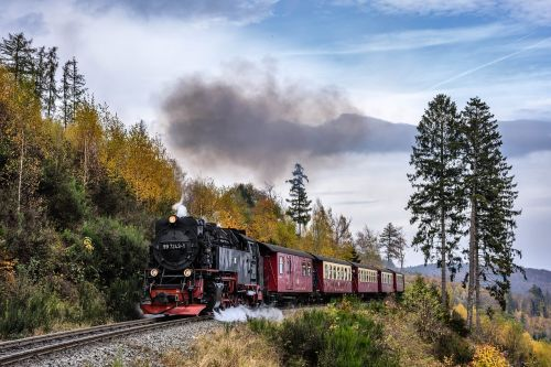 steam locomotive in the resin railway