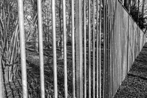 steel fence bars steel bars