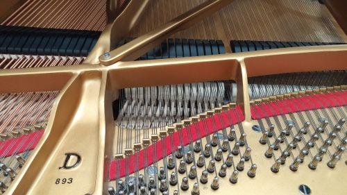 steinway piano instrument