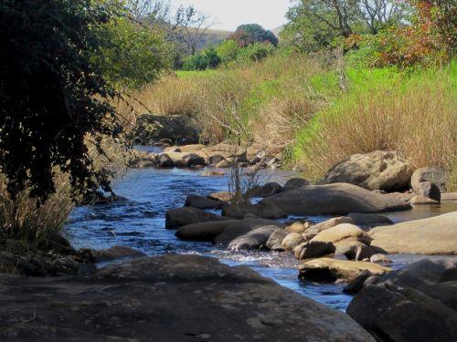 kalnai, upė, srautas, žolė, medžiai, akmenys, sterkspruit upė, Drakensbergas