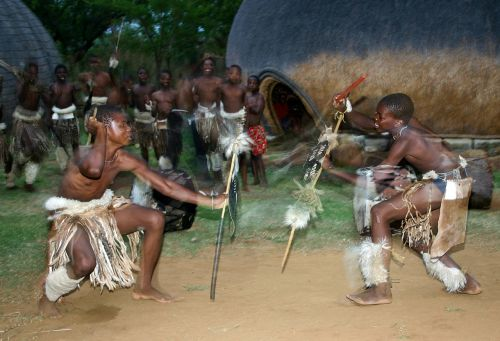stick fight zulu dancers hide shields